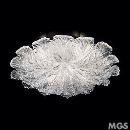 Ceiling lamp with crystal dew